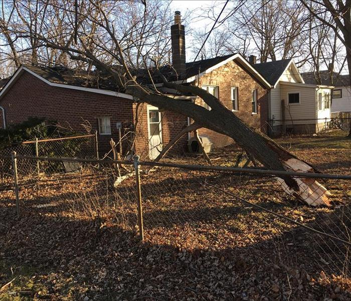 Storm Damage - Tree Falls on House in Hazel Park Before