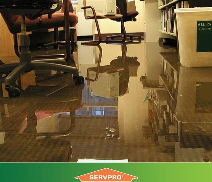 Water Damage Reasons Why a Timely Water Damage Restoration Service Is Important for a Commercial Building