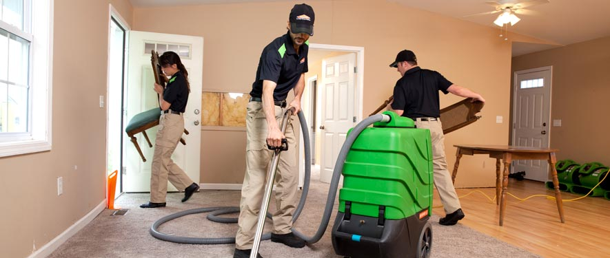 Midtown Detroit, MI cleaning services